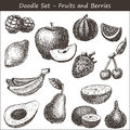 Doodle fruits and berries hand drawn Royalty Free Stock Image