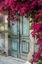 Door in cyprus old wooden with bougainvillea Royalty Free Stock Photography
