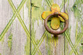 Door handle-knocker on old wooden door Royalty Free Stock Photo