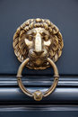 Door handle lion on blue door with a ring in the mouth Stock Photos