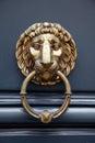 Door handle lion