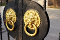 Door knocker golden lion head Stock Image