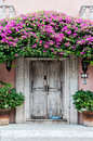 Door in Mexico Royalty Free Stock Photo