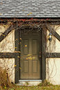 Door with overgrowth vertical Royalty Free Stock Photos