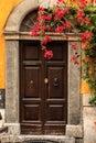 The Door in the summer in Rome