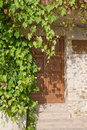 Door of a traditional house with window and climbing plants Royalty Free Stock Photos