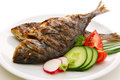 Dorada fish. Royalty Free Stock Photo
