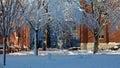 Dorm Buildings at Harvard University in Winter Stock Photos