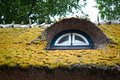 Dormer window in thatched roof Stock Photography