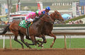 Dortmund wins the robert b lewis stakes arcadia ca feb jockey martin garcia blue cap and outrun gary stevens and firing line to Royalty Free Stock Photography