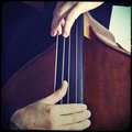 Double bass close up of wooden musical instrument that is played with a bow Royalty Free Stock Photography