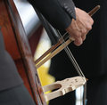 Double bass player's hand detail Royalty Free Stock Photo