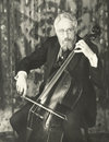 Double bassist Royalty Free Stock Photo