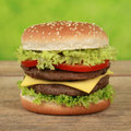 Double cheeseburger with tomatoes and lettuce cheese beef Royalty Free Stock Images