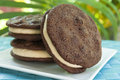 Double Chocolate Chip Peanut Butter Ice Cream Sandwich Royalty Free Stock Photo