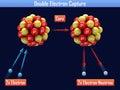 Double electron capture on dark background Stock Photo