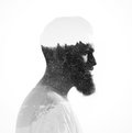 Double exposure of bearded guy and pinewood portrait a tree Royalty Free Stock Images