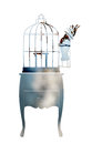 Double exposure. Birdcage and parrot