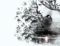 Double Exposure Of Woman And B...
