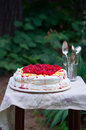 Double layered pavlova on serving table raspberry small in garden Royalty Free Stock Image