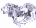 Double running lionï œpencil sketch Royalty Free Stock Images