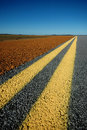 Double Yellow Lines Royalty Free Stock Photo