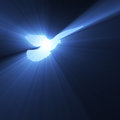 Dove flying with holy light flares Royalty Free Stock Photo