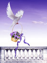 Dove with gift the beautiful background and bellflower basket Stock Photography