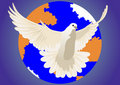 Dove of peace Stock Image