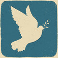 Dove of Peace. Stock Photos