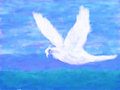 Dove of peace impressionist rendering a in flight Royalty Free Stock Photo