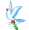 Dove of Peace release Royalty Free Stock Photo