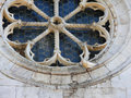 Dove resting on  old rose window of romanesque church valdicaste Royalty Free Stock Photo