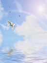 Dove in the sky flying on background Stock Photos