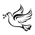 Dove symbol of peace vector black silhouette a flying with olive branch on a white background Stock Photography