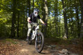 Downhill biker Royalty Free Stock Photo