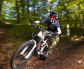 Downhill biker Stock Photography