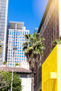 Downtown Los Angeles skyline with blue sky and palm trees. vert