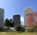 Downtown Miami - 4 Royalty Free Stock Photography