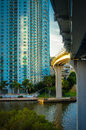Downtown miami buildings in a city florida usa Royalty Free Stock Images