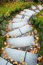 Downward leading steps Royalty Free Stock Photo