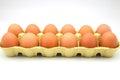 Dozen eggs in cardboard box Royalty Free Stock Images