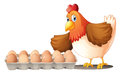 A dozen of eggs in a tray and the hen illustration on white background Royalty Free Stock Image