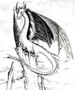 Dragon - black and white illustration Stock Image