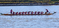 Dragon Boat Paddlers in Race Royalty Free Stock Photo
