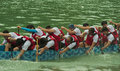 Dragon Boat paddling Royalty Free Stock Images