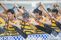 Dragon Boat Race Paddlers Royalty Free Stock Photo