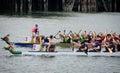 Dragon Boat Races at Victoria, British Columbia Royalty Free Stock Photo