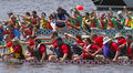 Dragon boat teams race Royalty Free Stock Photo