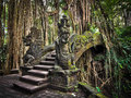 Dragon bridge at the monkey forest sanctuary in ubud bali an impressive pathway cuts through roots of a banyan tree and crosses a Royalty Free Stock Image